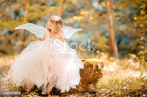 istock Fairy tale consept. Little toddler girl wearing beautiful princess dress with fairy wings 1084020924