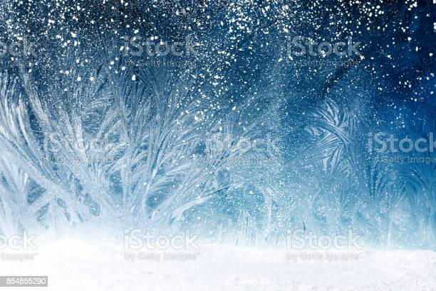 Photo of Fairy tale forest on window frost