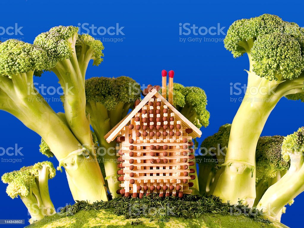 Fairy tale house royalty-free stock photo
