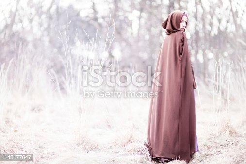Fairy tale lady wearing brown cloak, standing on a winter field.