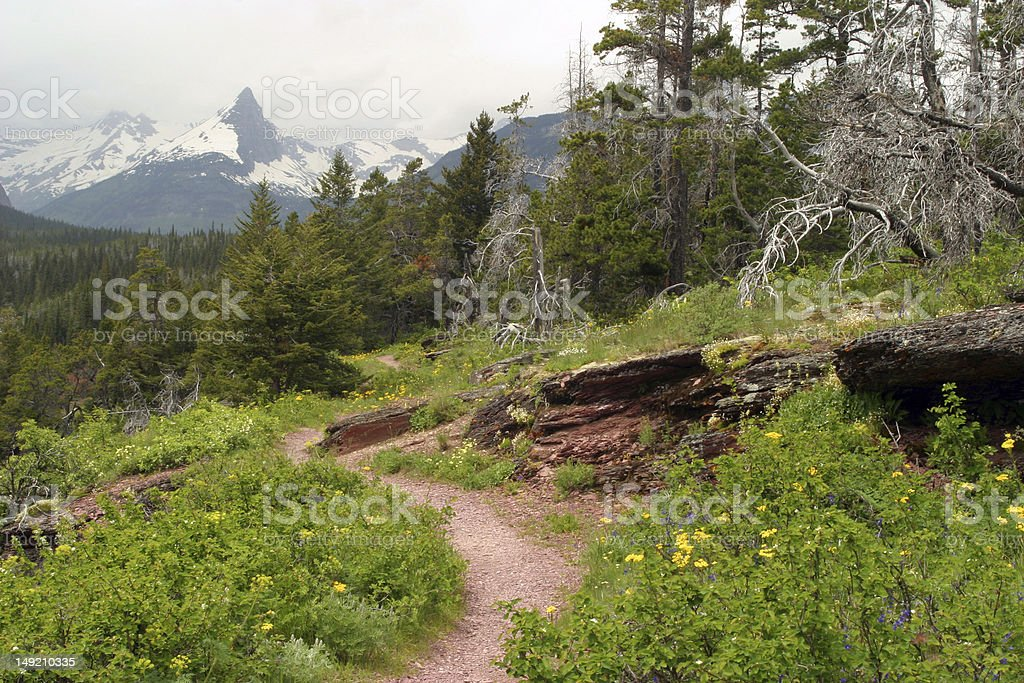Fairy Tale Landscape in Glacier National Park royalty-free stock photo