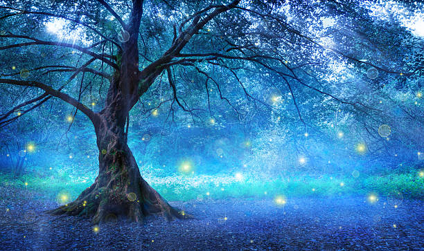 fairy tree in mystic forest - forest animals stock photos and pictures
