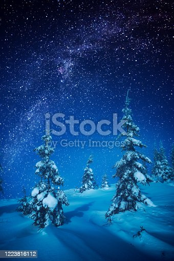 istock Fairy winter forest covered with snow in a moon light 1223816112