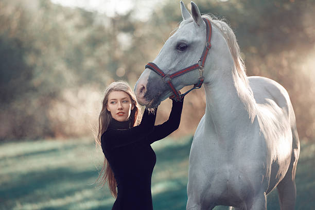 Glamour Lady Blue Dress Horse 6 Colored
