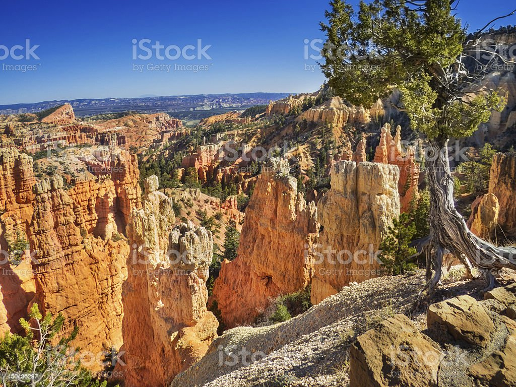 Fairyland Canyon, Bryce royalty-free stock photo