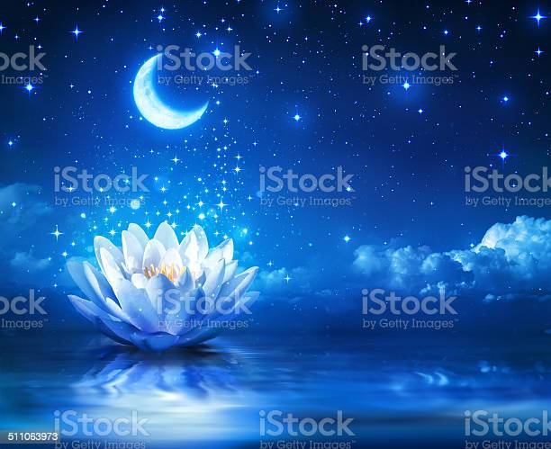 Photo of fairytale and magic blue background  - lily and moon