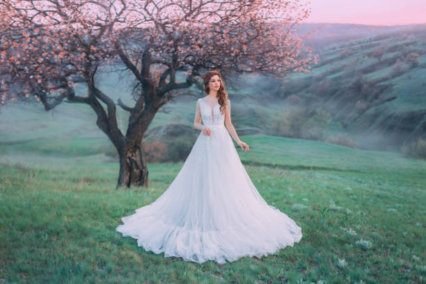 fairytale princess şafakta bir tepenin üzerinde duruyor. dantel ile lüks vintage beyaz elbise. bir örgü ile uzun saçlar için şık saç modeli. arka plan parlak bahar, yalnız çiçekli ağaç. yaratıcı renkler - beyaz elbise stok fotoğraflar ve resimler