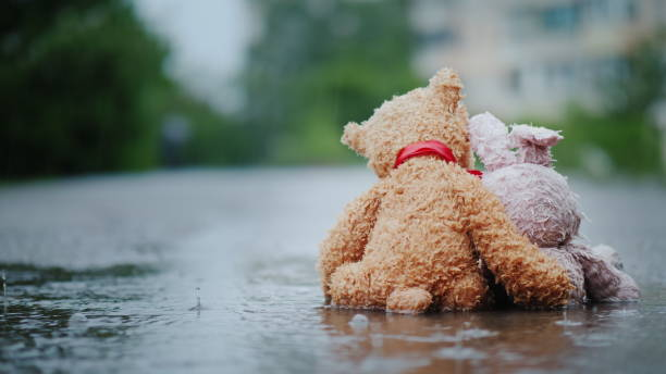 faithful friends - a bunny and a bear cub sit side by side on the road, wet under the pouring rain. look forward, embrace. rear view - disinherit stock pictures, royalty-free photos & images