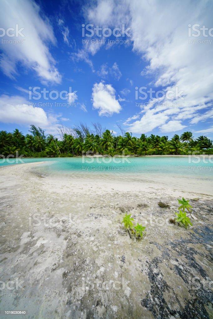 Fakarava Atoll Biosphere Reserve Natural Sandbar at Teahatea French Polynesia stock photo