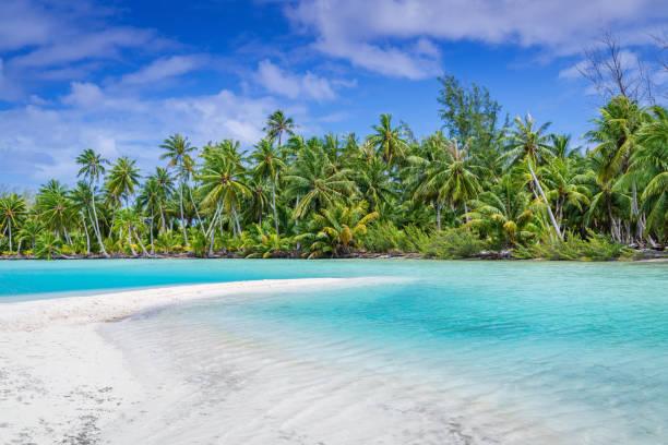 Fakarava Atoll Sandbank and Beach, French Polynesia stock photo