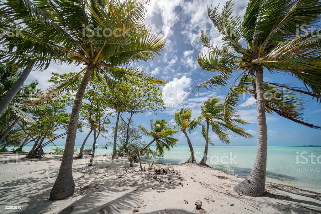 Fakarava Atoll Teahatea Motu Islet French Polynesia stock photo