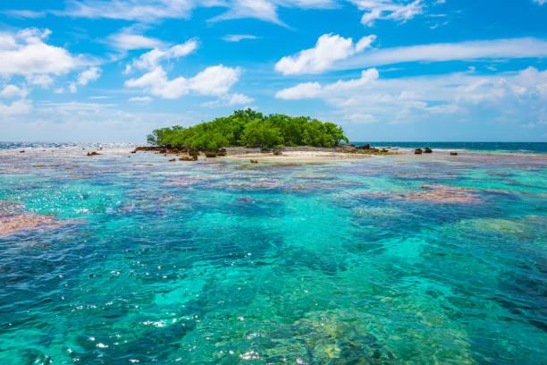 Fakarava landscape with beautiful lagoon, French Polynesia - foto stock