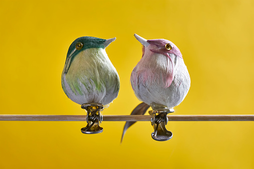 Fake birds with clips against a yellow background