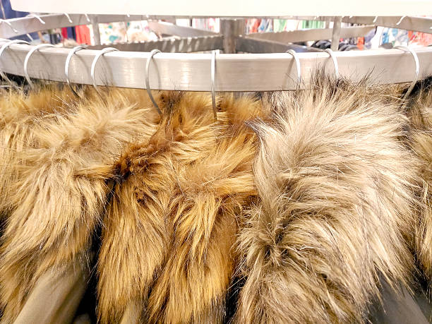 Fur Jacket Pictures, Images and Stock Photos - iStock