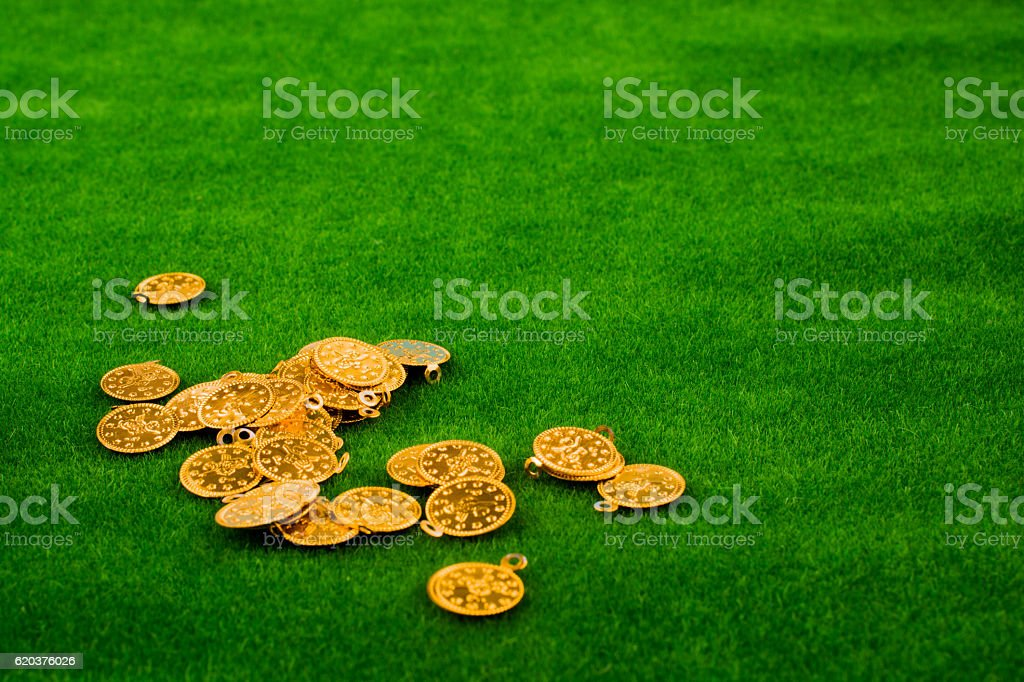 Fake gold coins on green grass zbiór zdjęć royalty-free
