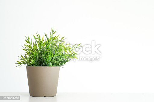 Fake artificial green potted plant in gray pot isolated against white background