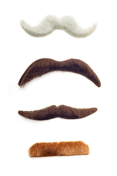Fake Mustaches Four different fake mustaches isolated on white. mustache stock pictures, royalty-free photos & images