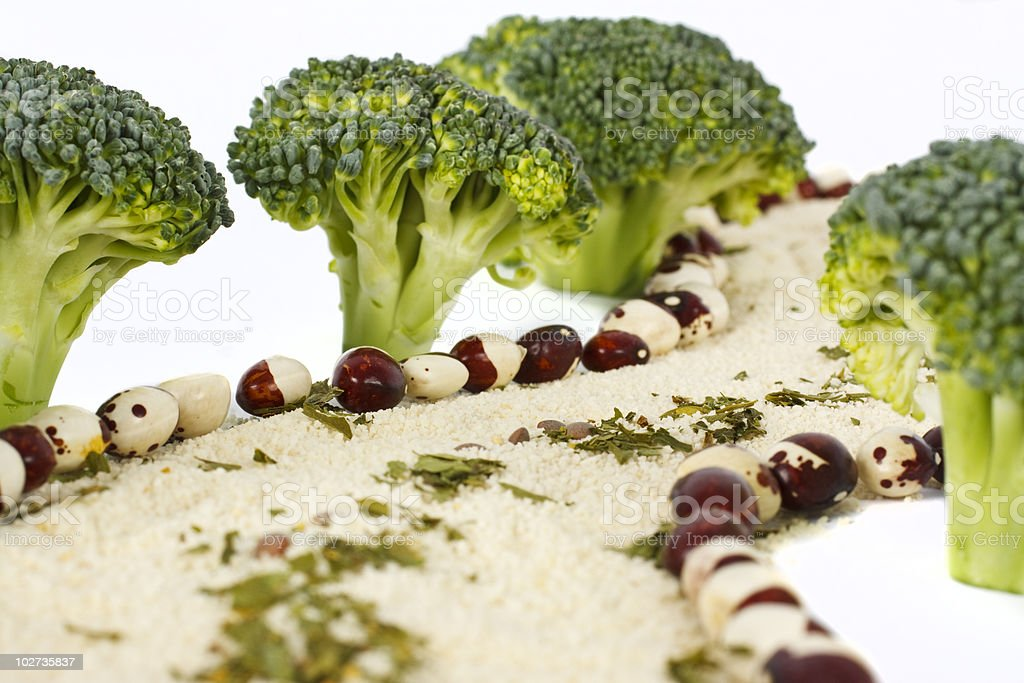 Fake Path made with Broccoli and Bread Crumbs royalty-free stock photo