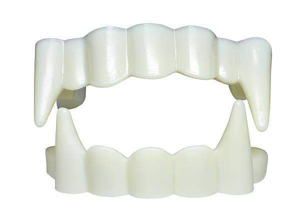 Fake plastic vampire teeth for Halloween stock photo