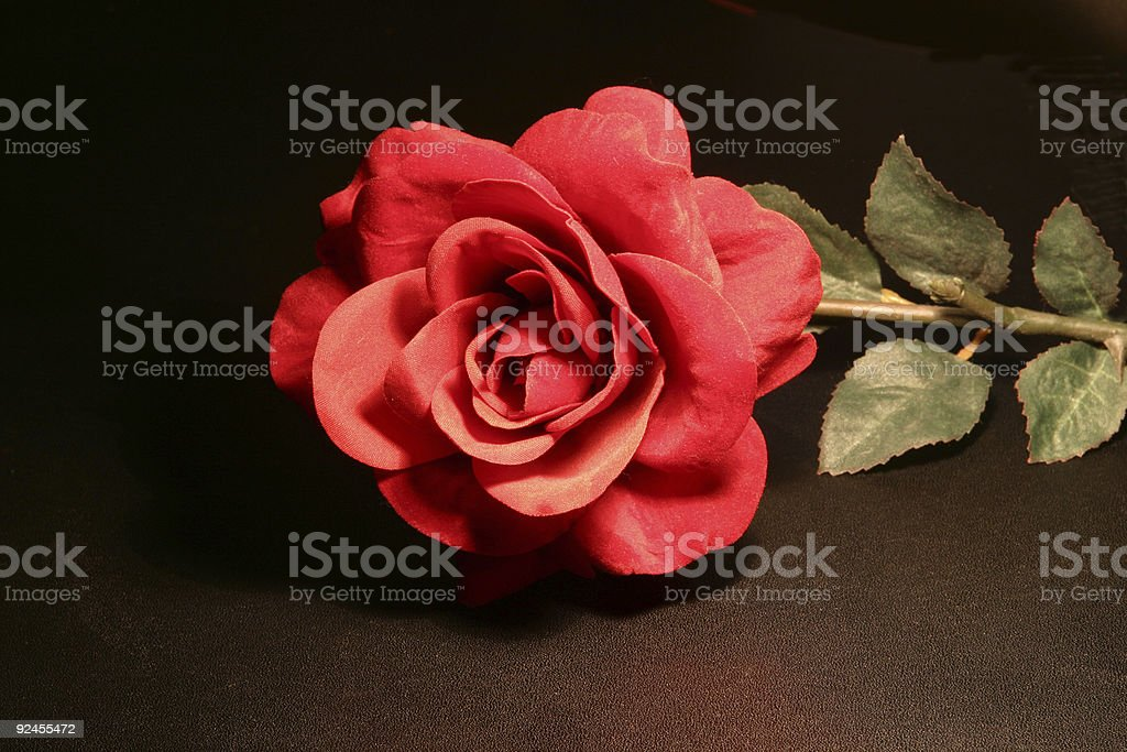 Fake rose on black background for design use 1 royalty-free stock photo