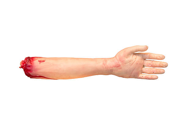 Fake severed human arm with terrible blood stock photo