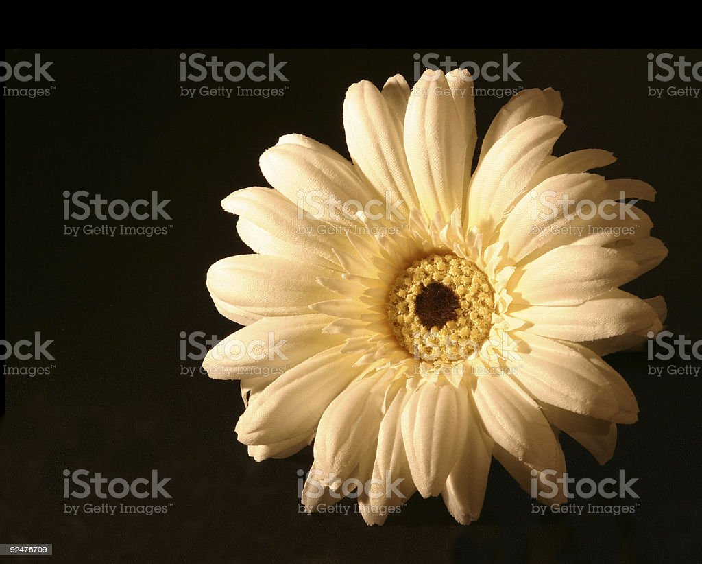 Fake sunflower for design use royalty-free stock photo