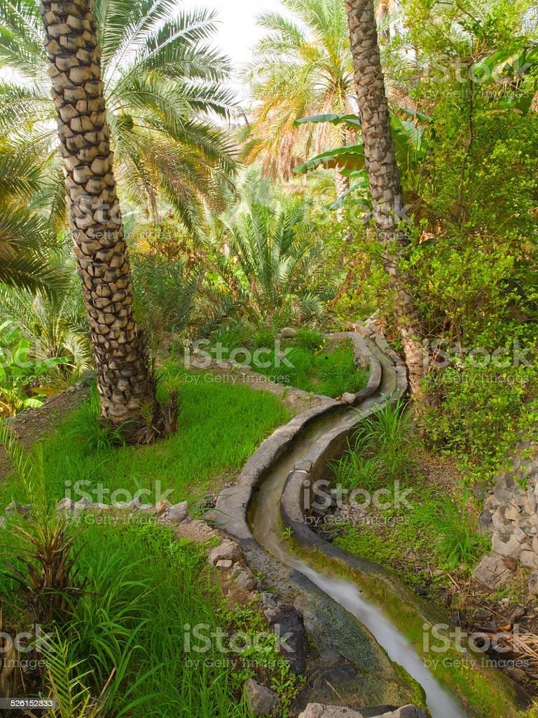 Falaj irrigation system in Oman stock photo