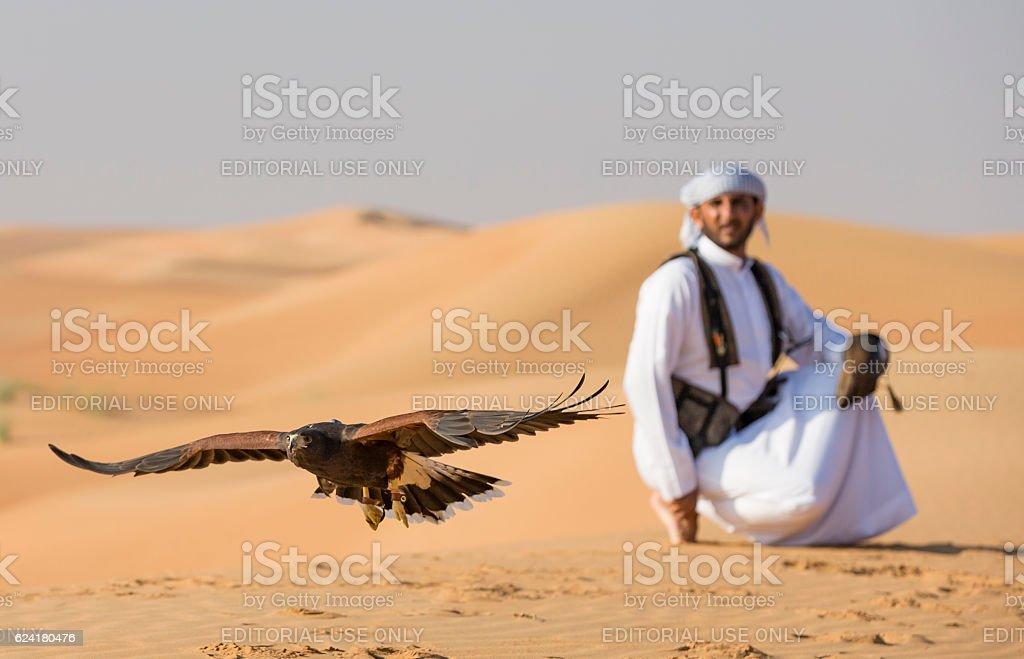 Falconer is training Harrier Hawk in a desert near Dubai stock photo