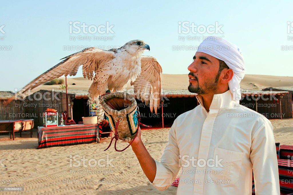 Falconry Expert holding Falcon in Dubai United Arab Emirates stock photo