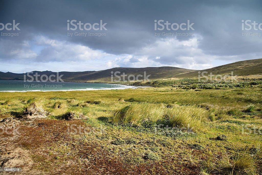 Falkland Island Landscape stock photo