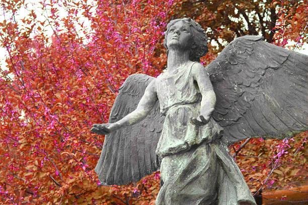 fall angel stock photo