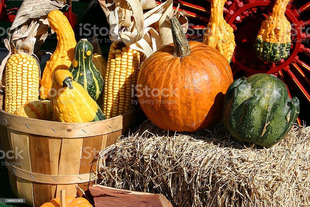 Fall Arrangement royalty-free stock photo