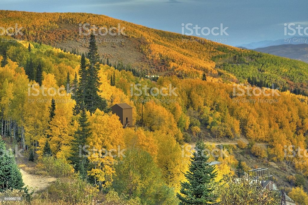 Fall ASpens at Empire Mine - HDR Photo stock photo