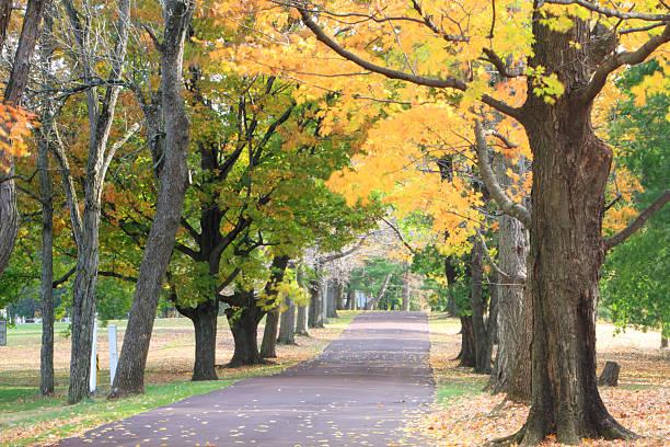 Fall at Audubon