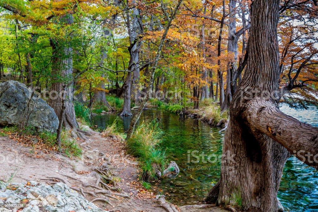 Fall at Garner State Park, Texas - Royalty-free Amarelo Foto de stock