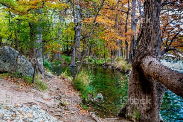 Fall At Garner State Park Texas - Fotografias de stock e mais imagens de Amarelo