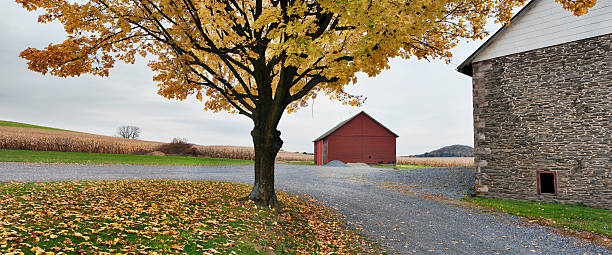 Fall at Rural Pennsylvania Farm stock photo