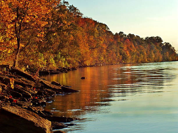 Fall at the River stock photo