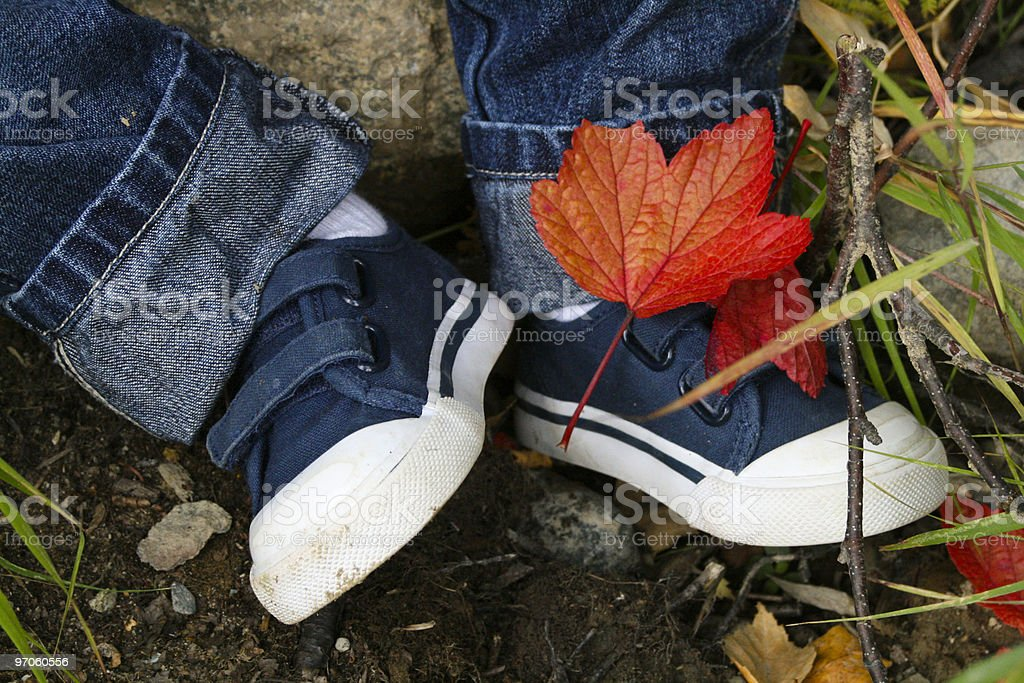 Fall at Two royalty-free stock photo