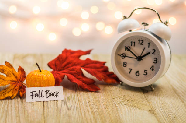 Fall Back Daylight Saving Time concept with white clock and autumn leaves Fall Back Daylight Saving Time concept with white clock and autumn leaves, soft bokeh background on wooden board daylight savings stock pictures, royalty-free photos & images