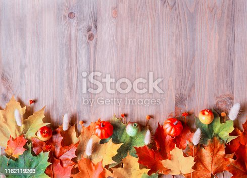 Fall background. Maple varicolored fall leaves on the wooden background with free space for text