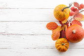 Fall background of colorful autumn pumpkins and leaves