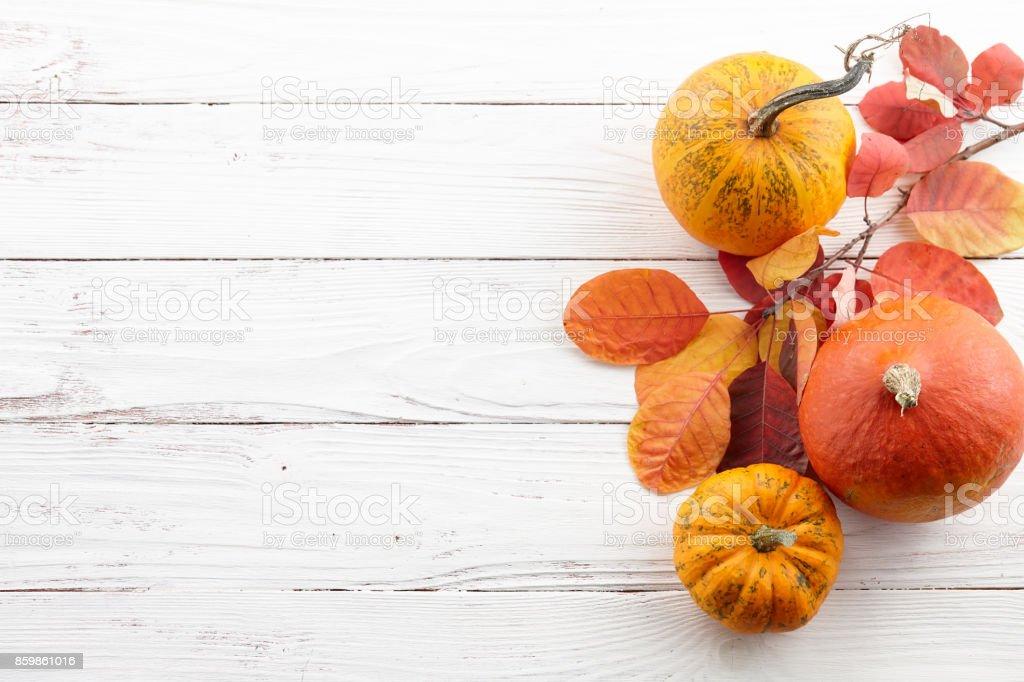 Herbst-Hintergrund der bunten Herbst Kürbisse und Blätter – Foto