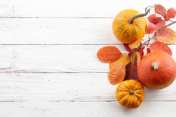 fall background of colorful autumn pumpkins and leaves - zbierać plony zdjęcia i obrazy z banku zdjęć