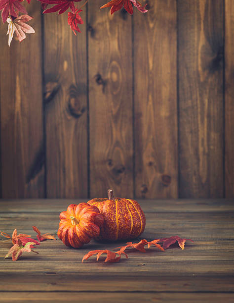 Fall Backgrounds Rustic Still Life With Pumpkins Leaves And Wood Stock Photo