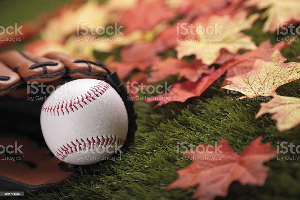 Fall Baseball royalty-free stock photo