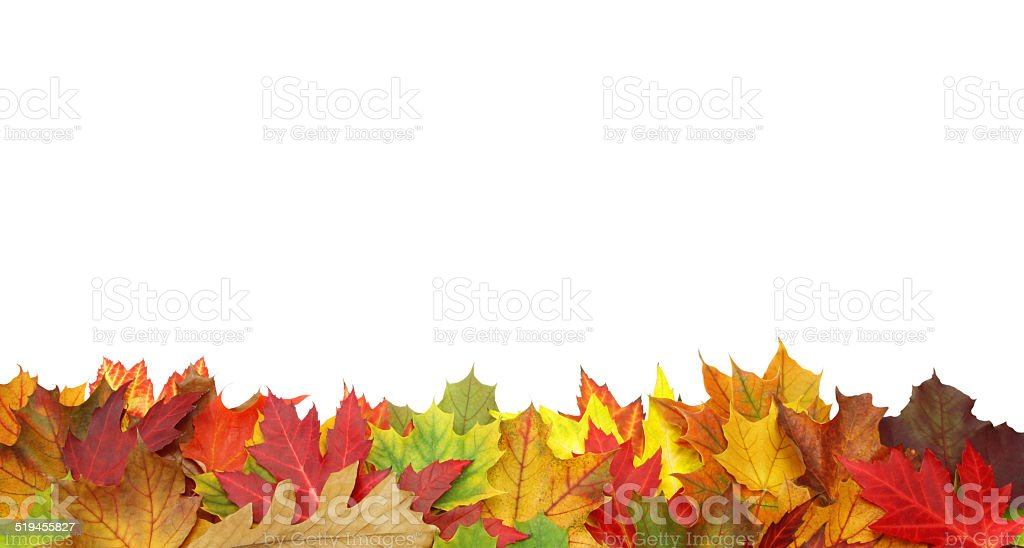 Fall border with clipping path stock photo