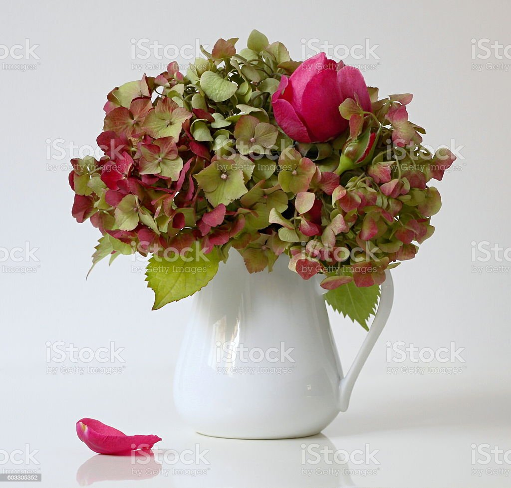 Fall Bouquet Of Hortensia Flowers And Pink Roses In Vase Stock Photo