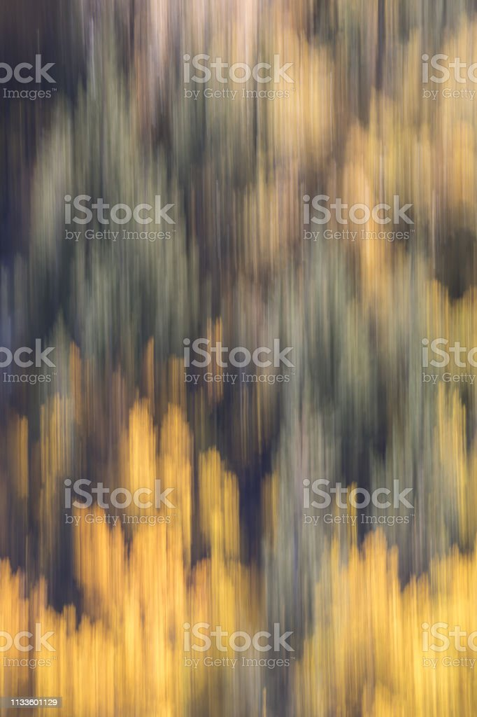 Fall Color Abstract stock photo