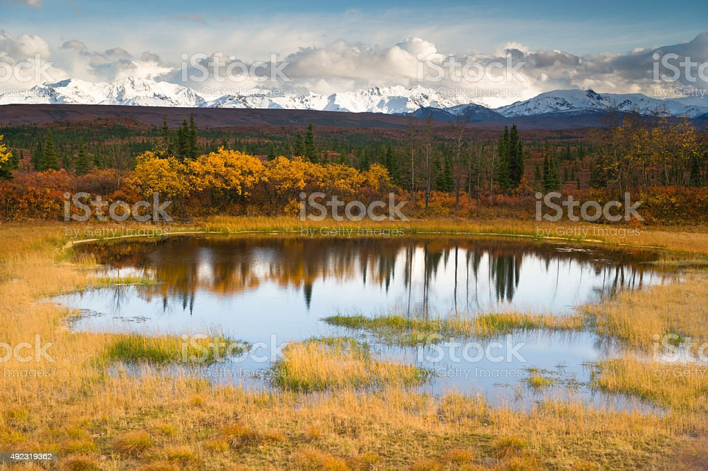 Fall Color Alpine Lake Alaska Range Mountain Peaks Autumn Season stock photo